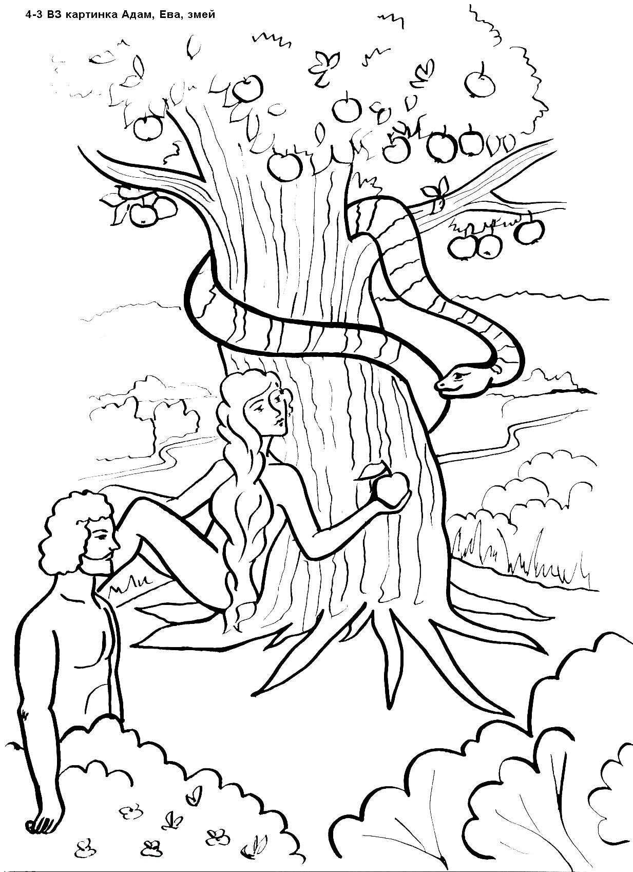 Ева и адам рисунки